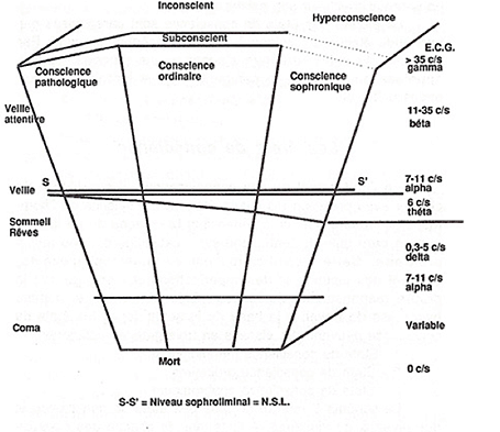 sophro_graph_455